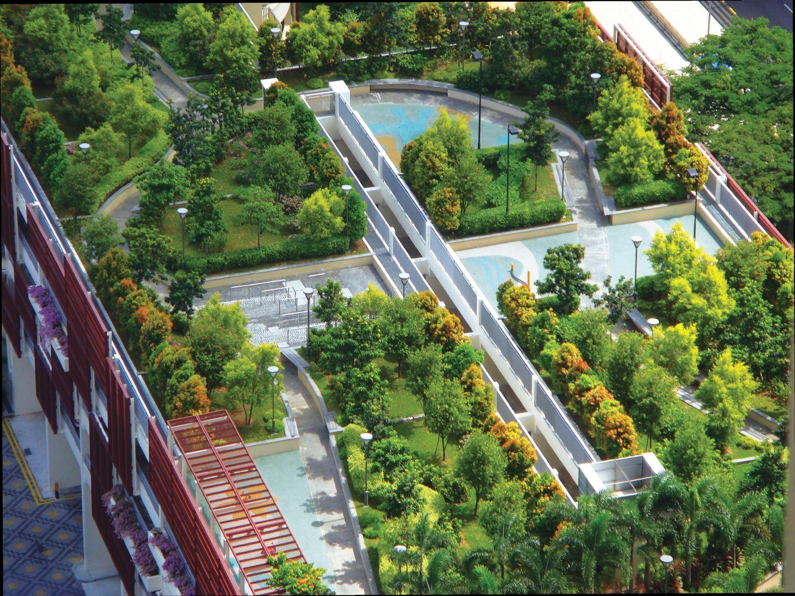 Çatı ve Teras Bahçeleri